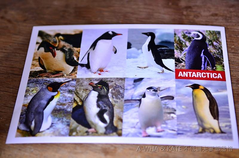 【給小布妹的情書】寄給妳們每一張來自世界各地的明信片~都代表了爸爸對妳們的思念!