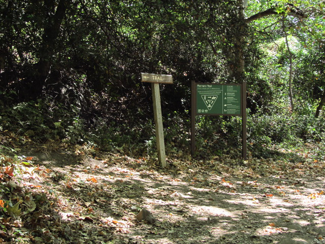 start of the trail up the fire road