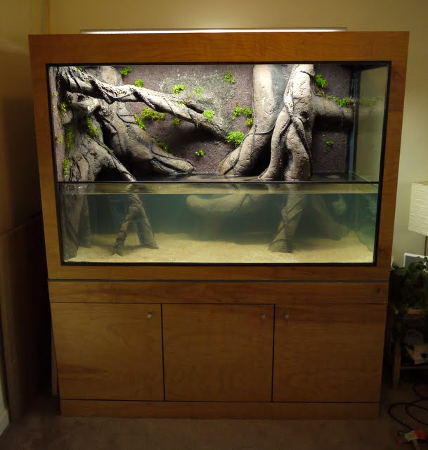 Diy Background African Cichlids The Planted Tank Forum
