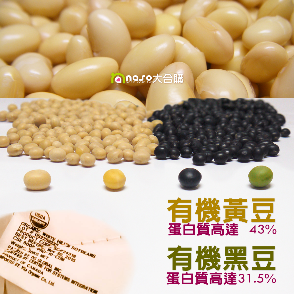 【naso開箱文】加拿大DG楓葉牌 有機黃豆,蛋白質高豆漿就好喝!