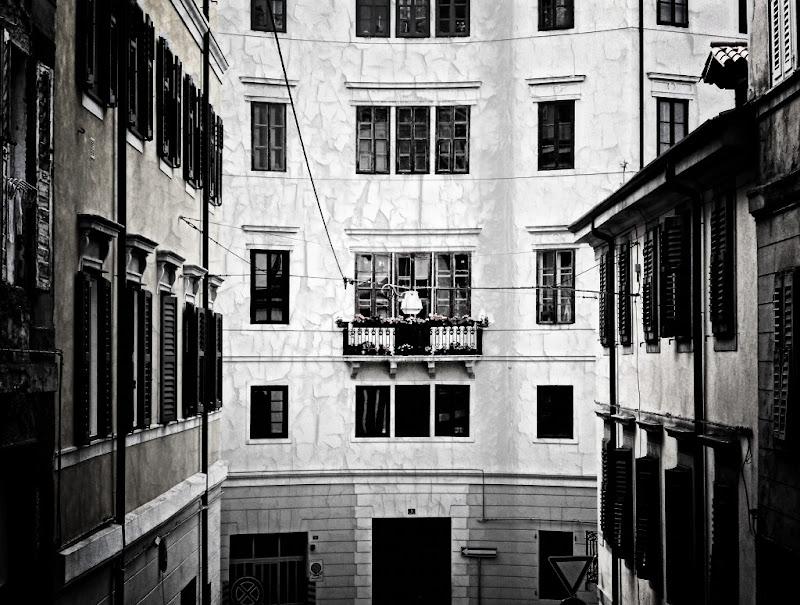 Trieste tristia 4