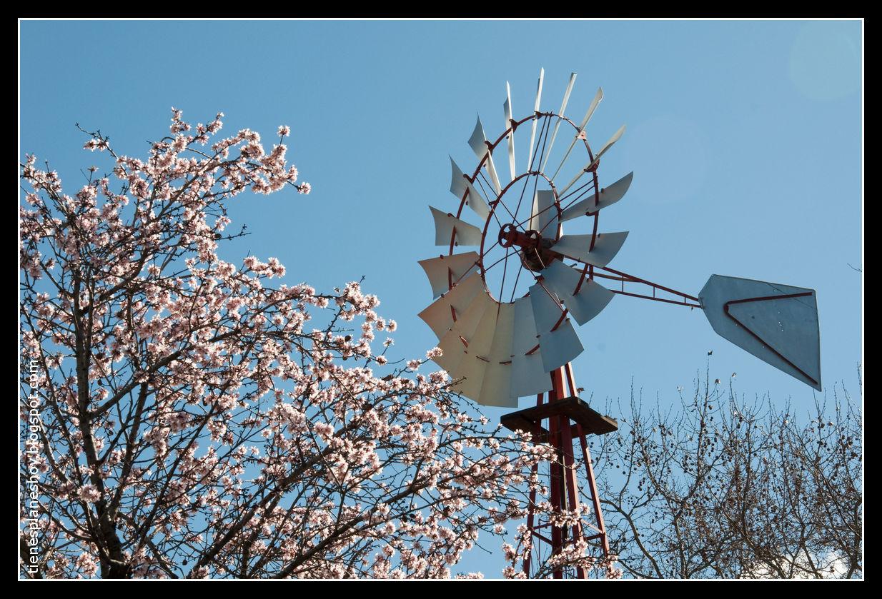 Marzo 2011 tienes planes hoy for Piso quinta de los molinos