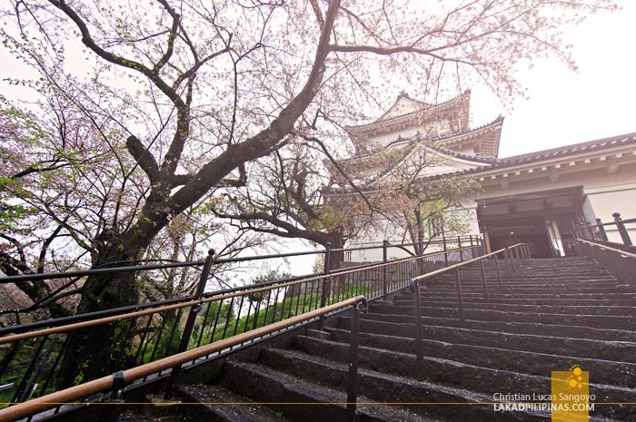 Kanagawa's Odawara Castle