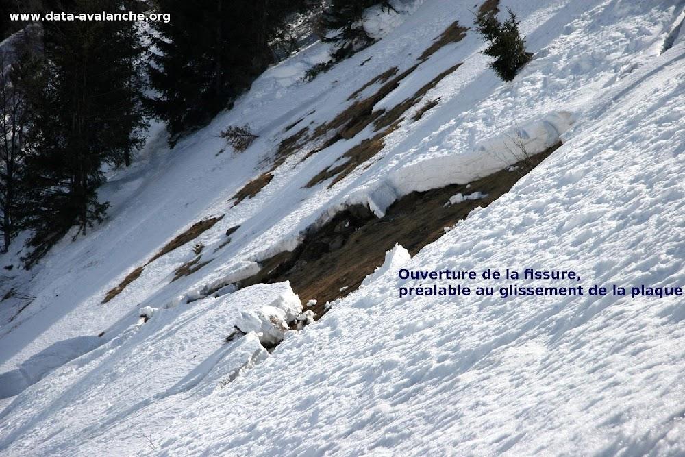 Avalanche Matheysine, secteur Côte Rouge, Route du Sanctuaire Notre Dame de la Salette - Combe Male - Photo 1