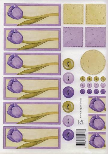 320330 marjoleine paarse tulp.jpg