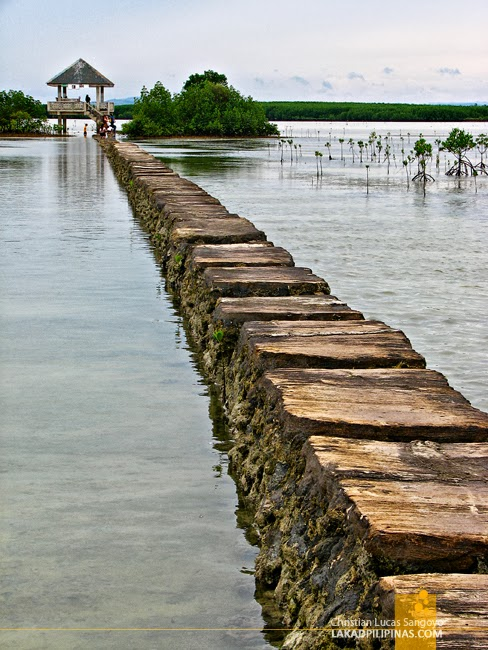 Causeway at Olango Island Wildlife Sanctuary in Cebu