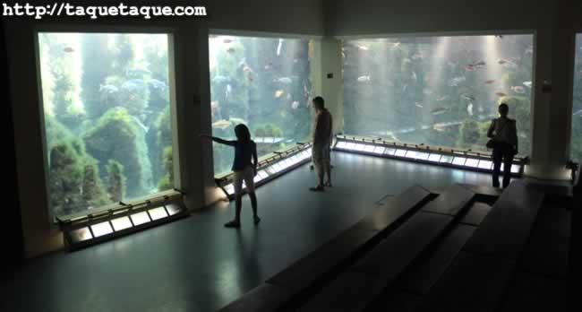 """Aquarium Finisterrae, o """"La Casa de los Peces"""", en La Coruña (28 de agosto de 2011)"""