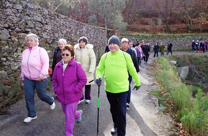 Lamego ConVida a Caminhar pôs a andar mais de 1200 pessoas