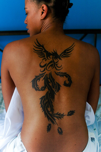 tribal pheonix tattoo designs