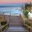 Tiffany Cook avatar image