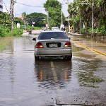 Water Crosses the Road by Wat Pa