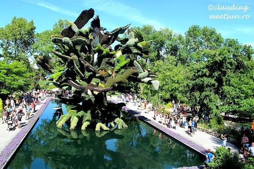 Mosaiculture. Montreal 2013. Copacul cu pasari