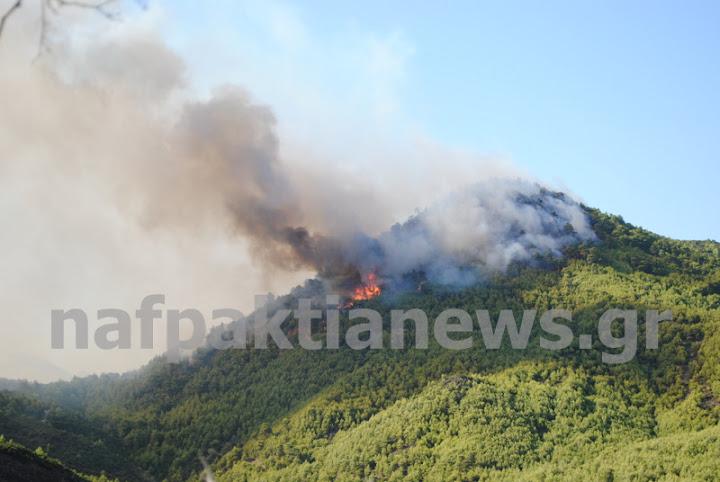 Μεγάλη φωτιά κοντά στην Γαβρολίμνη . Ξεκίνησε από την Άνω Βασιλική-Συνεχής ενημέρωση