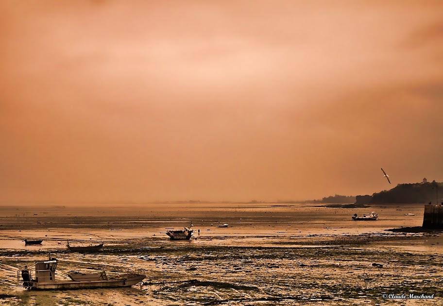 marée basse 20120408_P%25C3%25A2ques_0018