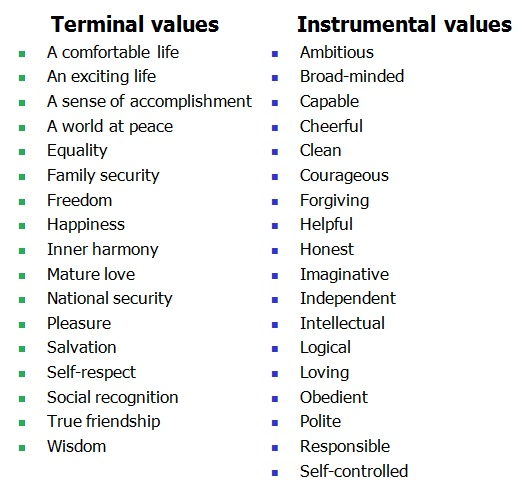 Terminal values vs instrumental values