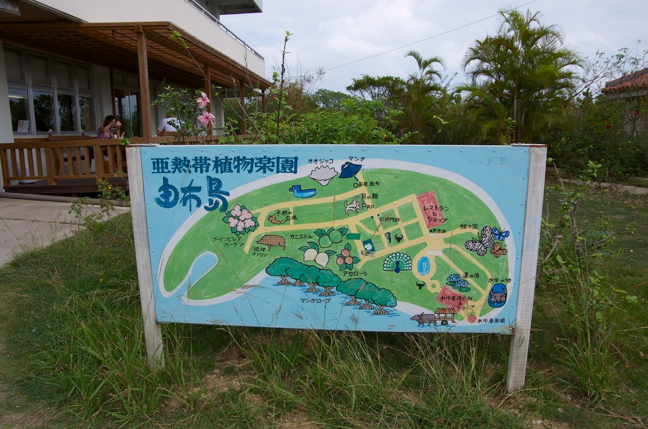 島全体が亜熱帯植物園