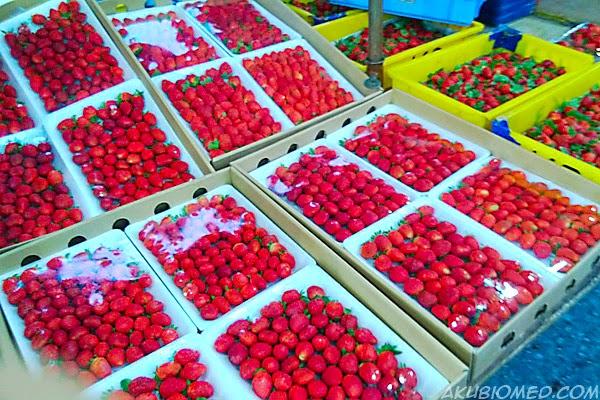 buah strawberry pasar malam brinchang