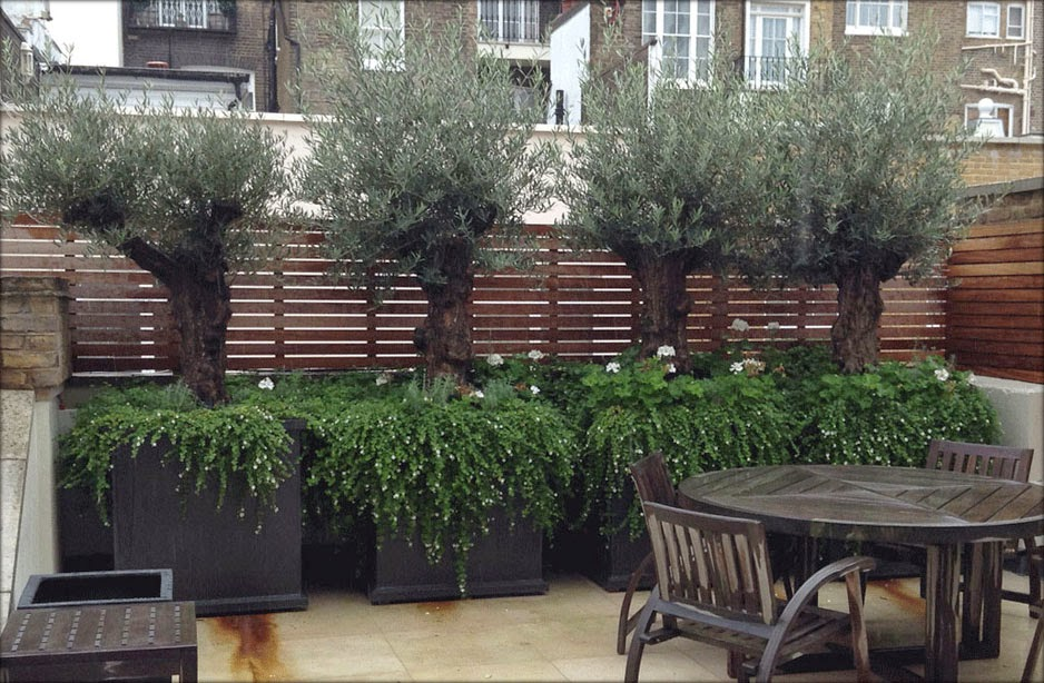 Large Fibreglass Garden Pots and Planters