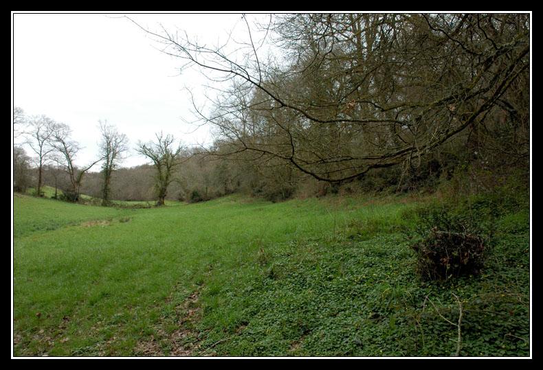 Dans mon Béarn adoptif: mon terrain de jeu! DSC_0931