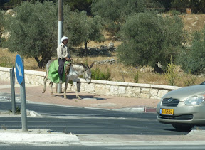 Seen just finished crossing the street in Jerusalem