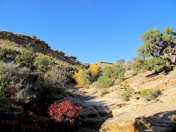 Side canyon that leads up the San Rafael Reef