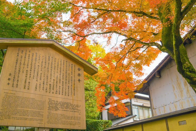 京都 紅葉 安楽寺 写真