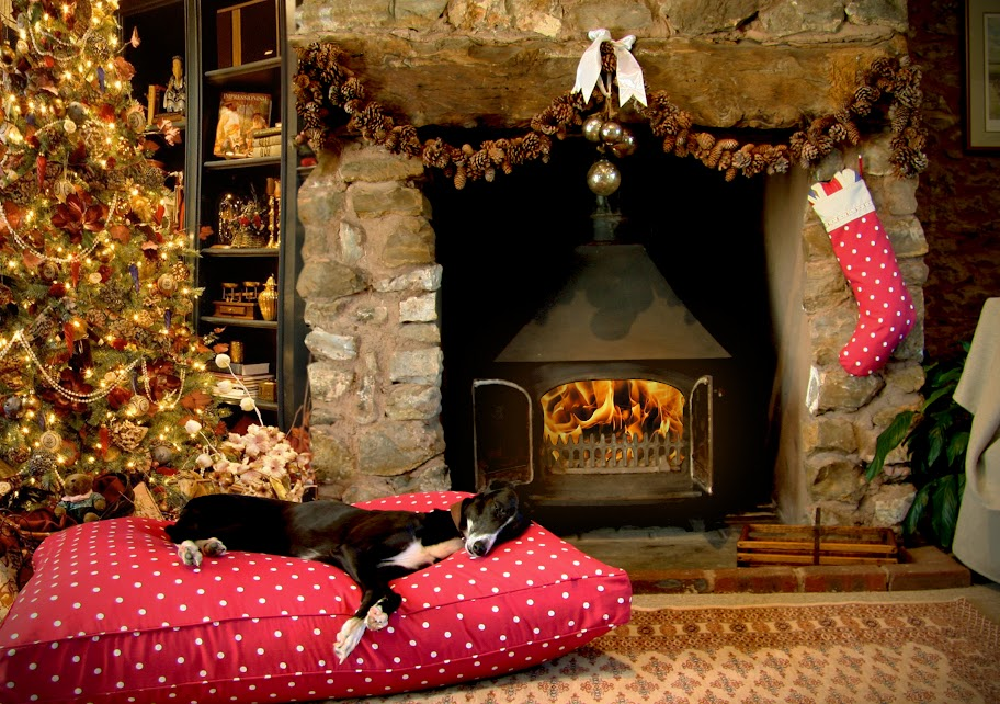 Christmas Dog Beds Perfect For The Festive Season by Hugo and Hennie