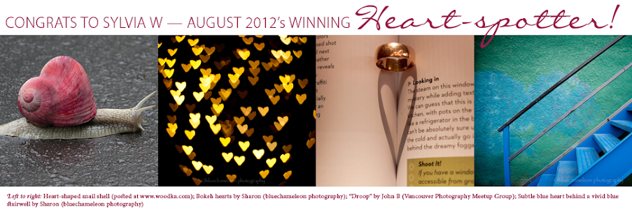 The month's submissions by Sylvia W. – the August 2012 winner of My Heart Shaped World's monthly Heart-spotting Contest