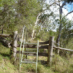 Stile climbing over a timber fence (413105)