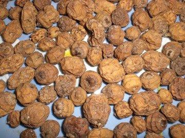 GOODMAN MERCHANDISE INTERNATIONAL LTD (GMI): TIGER NUTS