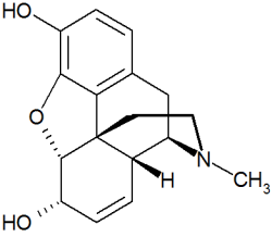 estructura morfina