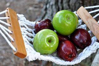 photo copyrights   b  jacobsen j  jacobsen  u0026 h  conradi banana hammocks      cowboy creations llc  rh   sites google