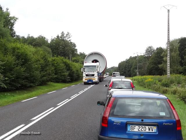 passeando - Passeando pela Suíça - 2012 - Página 21 DSC08318