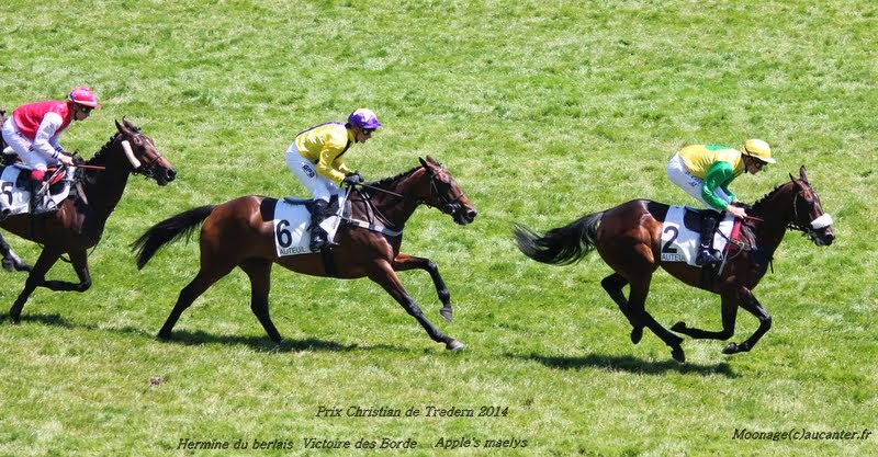 Photos Auteuil le 21-06-2014 IMG_2271