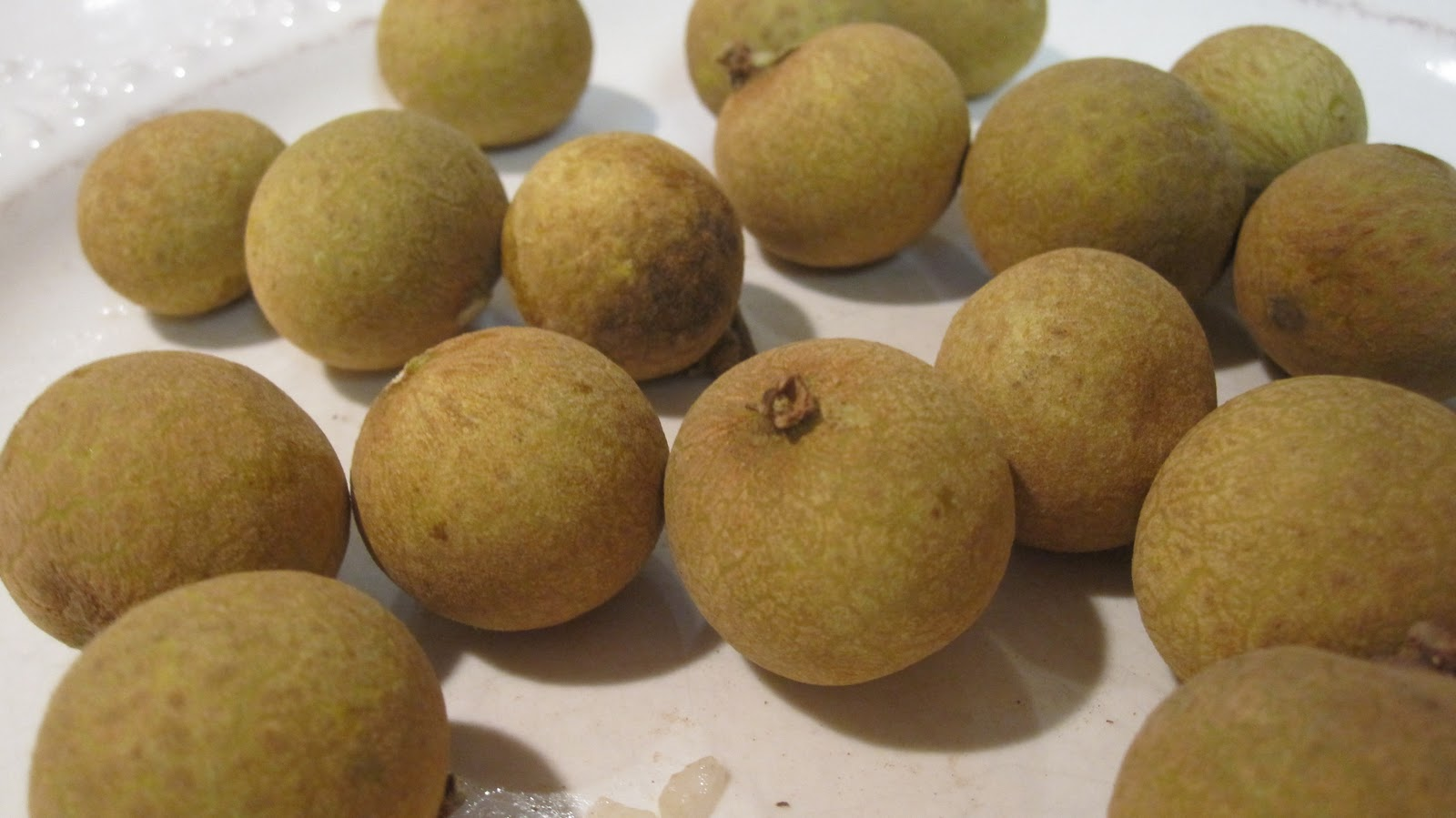 Cannundrums: Longan