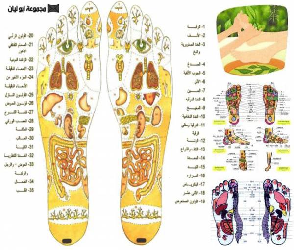 أصناف التدليك وأنواعه  ، المساج وفوائده للجلد image008.jpg