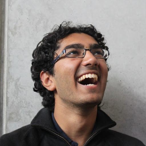 Vikram Amin