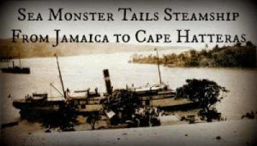 Sea Monster Tails Steamship From Jamaica To Cape Hatteras