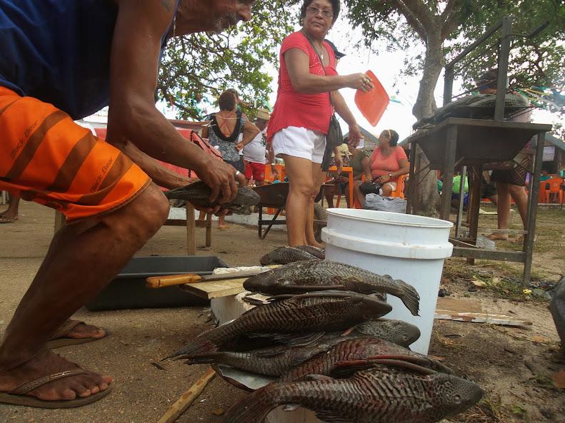 Brasil - Rota das Fronteiras  / Uma Saga pela Amazônia - Página 3 20140915_105117