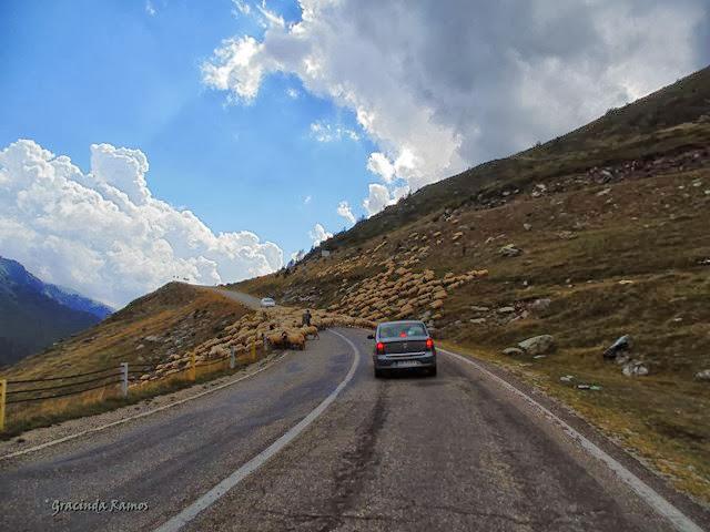 Passeando pelos Balcãs... rumo à Roménia! - Página 11 DSC03053