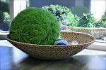 LePort Private School Irvine - Texture exploration basket at Montessori childcare