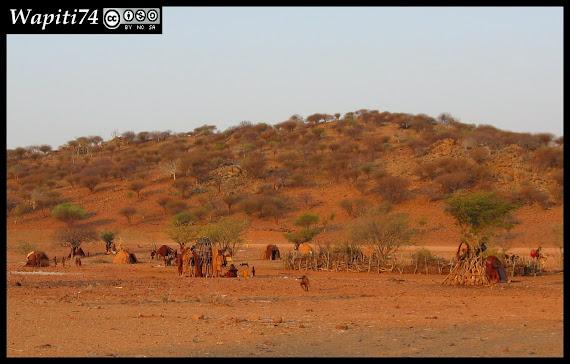 Balade australe... 11 jours en Namibie IMG_0470