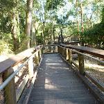 Boardwalk at Blackbutt Wildlife Exhibits (399391)