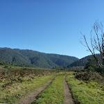 Looking along trail near Swampy Plains Creek (293062)