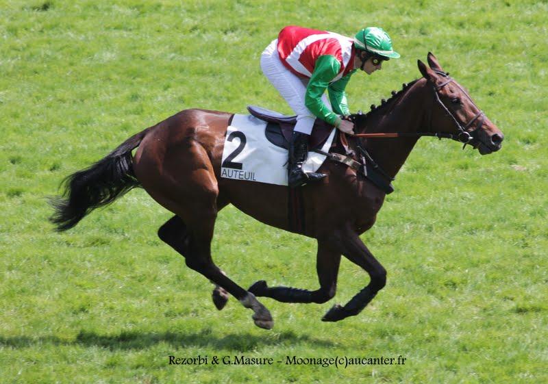 Photos Auteuil 17-05-2015 Journée du Grand Steeple IMG_9977