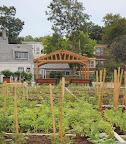 Nightingale Community Garden