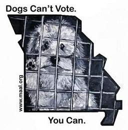 Dogs Can't Vote... You Can.