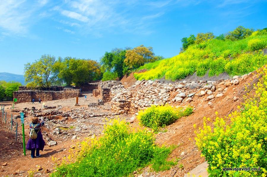 Тель Дан. Руины города железного века в заповеднике.