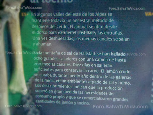 Museo Marq Alicante - Hallstatt el reino de la sal DSC09555