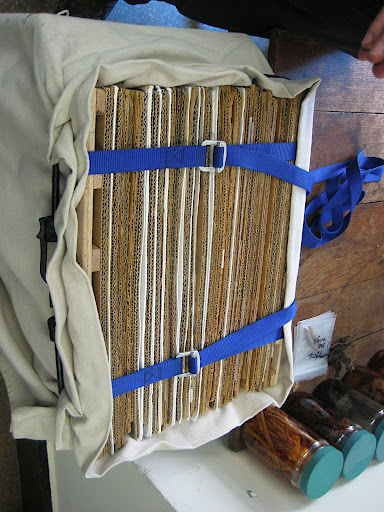 many plants arranged in the press and tightened well with straps